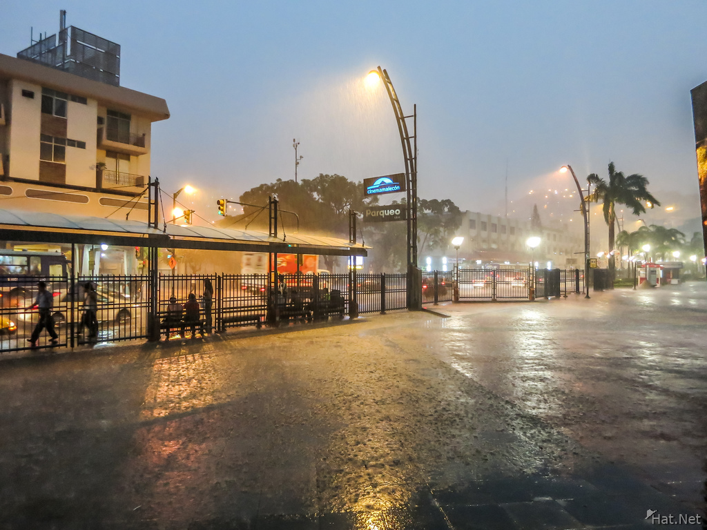 Tropical Rain Storm in Guayaquil
