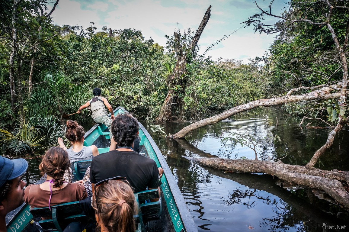 Cuyabeno River Tour