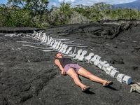 whale corpse after swallowing a person Fernandina Island, Galapagos, Ecuador, South America