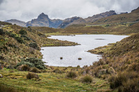 Cajax National Park near Cuenca Cuenca, Ecuador, South America